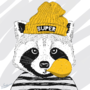 A racoon hipster