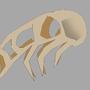 Naerov Skull