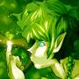 Shiny Shiny by ThinXIII