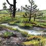 Wetland (Upton Heath)