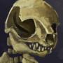 Kristoph Ferret Skeleton