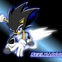 Seelkadoom the Hedgehog