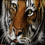 Tiger (Stippler) by Tapersteve