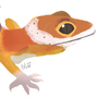 Leopard Gecko by ribbitdoodle
