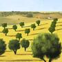 alentejo, portugal landscape