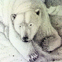 Polar Snow by Omegaro