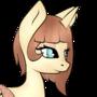 Lacey Pony