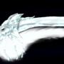 . : : . MidnightFlight . : : . by DJDragonwolf