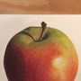 Realistic apple [Traditional art]