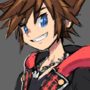 another sora