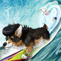 Dandy Dog Surfing ( circa 2014 )