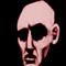 bald head 25%