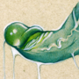 tentakok