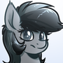 Grey Horse Commission by WitchTaunter