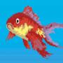 Fish Gif