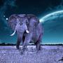 Cosmic Elefant by boneflip38