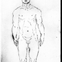 My_Anatomy_Guide by pupart