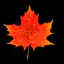 Leaffff