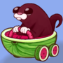 Otter driving a watermelon!