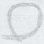 Sweetgrass Braid Drawing