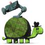 tortoise cam