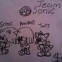team sonic by sonicdud123