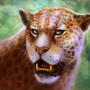 jaguar by malisaa