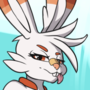 Scorbunny wants you to catch up!