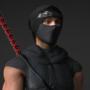It's a Ninja!!
