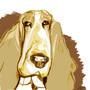 Dopey Dog