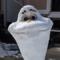 Snow sculpture Olaf