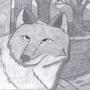Coyote by Yoshi43805