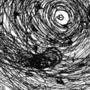 Eye of the Storm, Screams in the Wind [2K17]