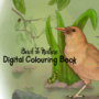 Back To Nature - Digital Colouring Book