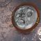 Ikanna Mirror Shield