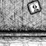 Room of Lies