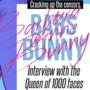 Bestseller Bunny
