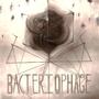 Bacteriophage by Barzona