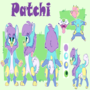Patchi Reference Sheet