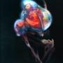 Gamma Metroid