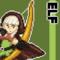 Dragons Crown - Elf