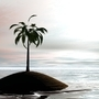 Palm on the sea by OPQC