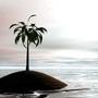 Palm on the sea