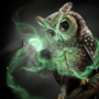 The Owl Mages of Avion
