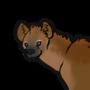 hyena practice