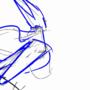 Rough Hornet Animation